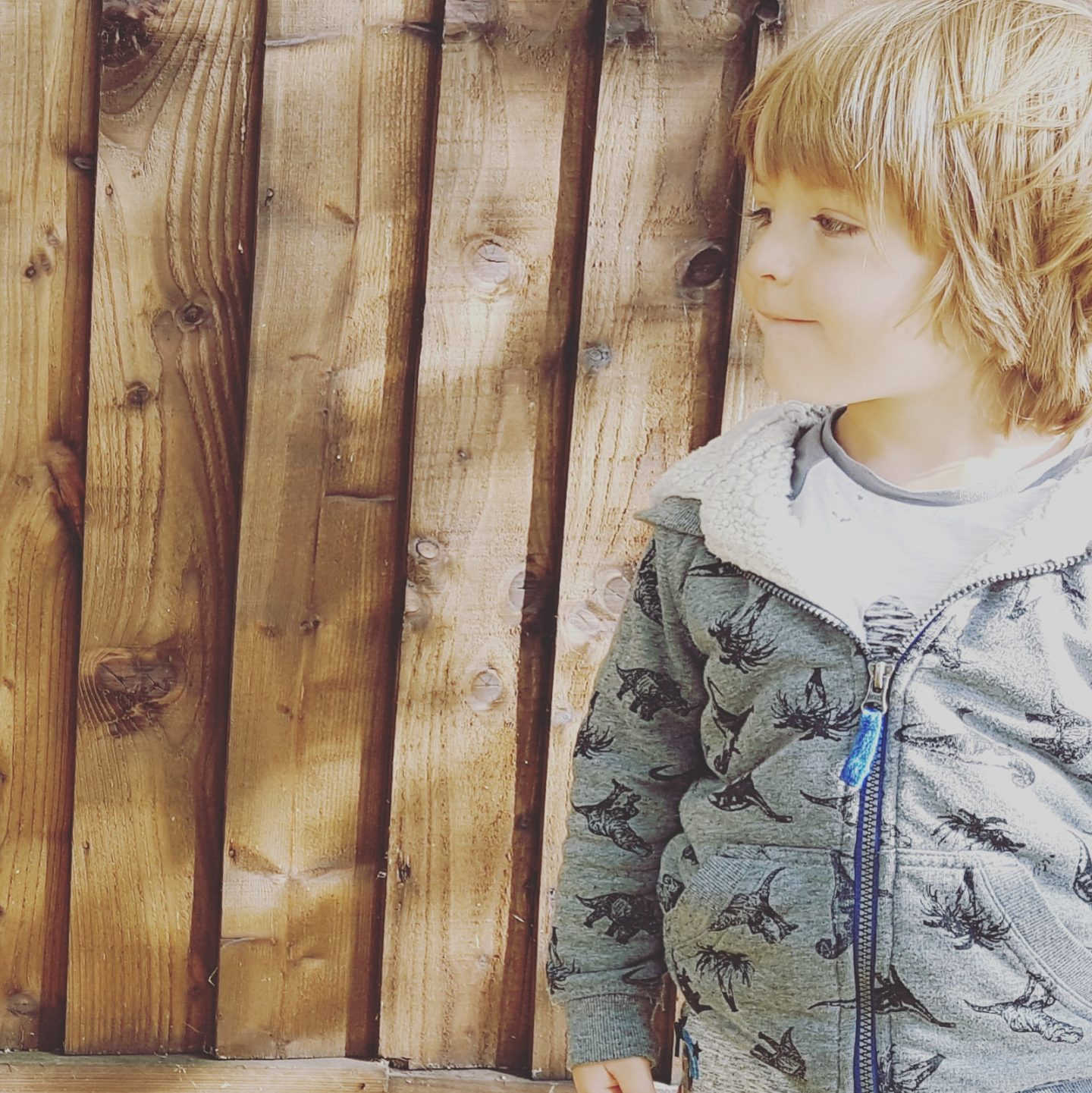 boy and a fence